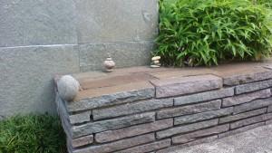 skl5582作・玄関先で遊んでいます。ミニ石花です。